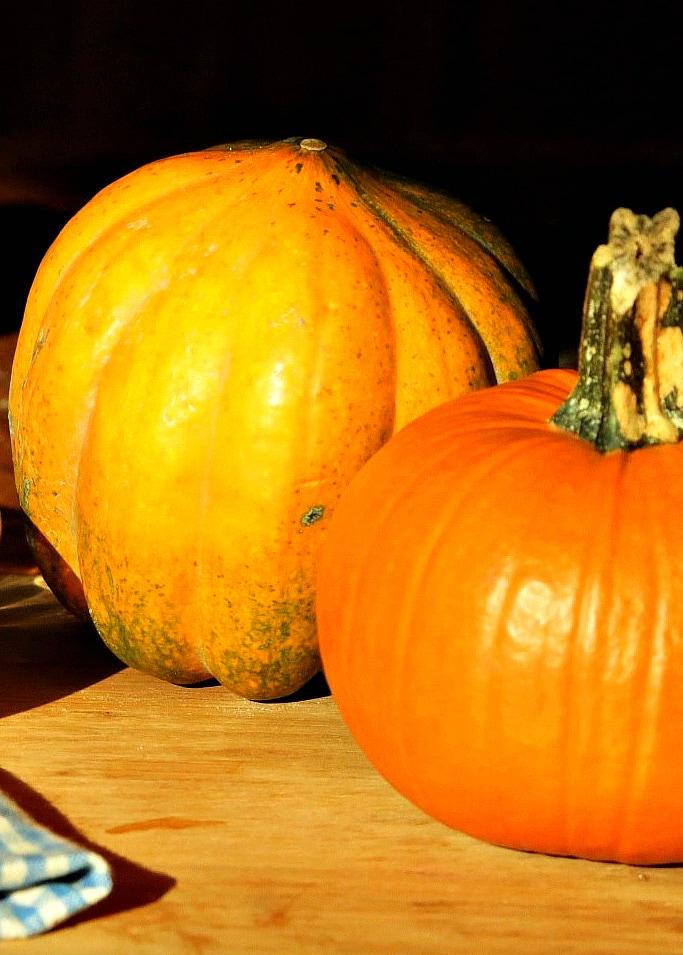 la-cooquette-classic-pumpkin-pie-pumpkins