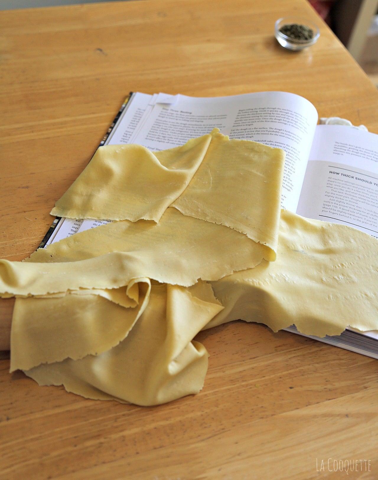 Pumpkin Pasta Dough Recipes — Dishmaps