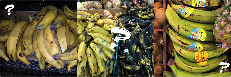 platanos-bananos-guineos-lacooquette
